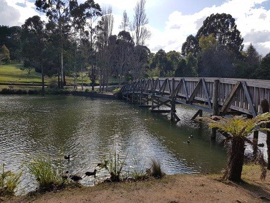 Belgrave, Australien: 20170725_121522_large.jpg