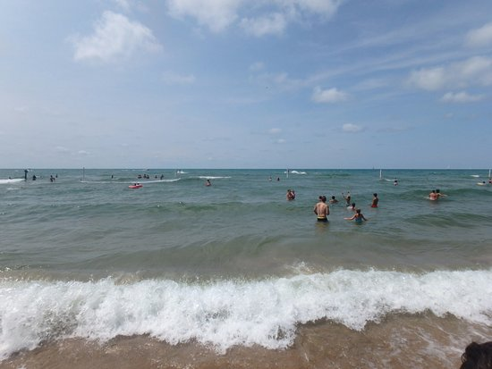 Holland Beach Picture Of Holland State Park Beach