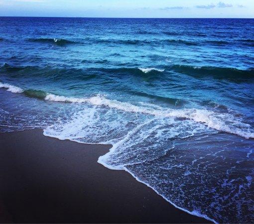 Manalapan, FL: photo1.jpg