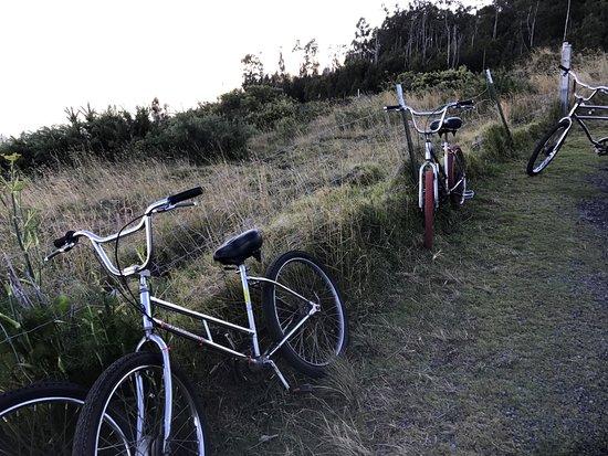 Paia, Hawaje: Sketchy bikes.