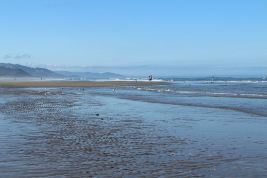 Manzanita, OR: Easy beach to walk on, very firm nearer the water. Loose sand near the dune is harder to walk th
