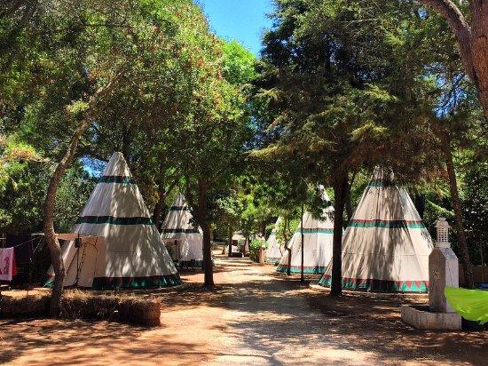 Budens, Portugal: Zona de los tipis del camping