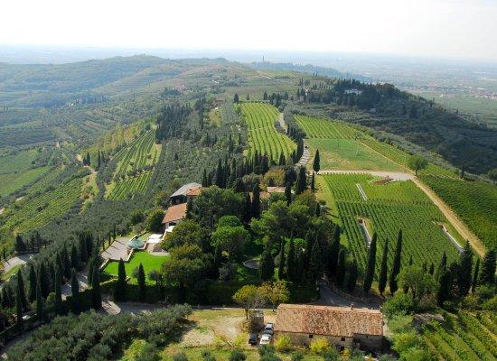 Azienda Agricola Trabucchi