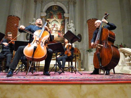 Interpreti Veneziani: Davide Amadio baroque cellist