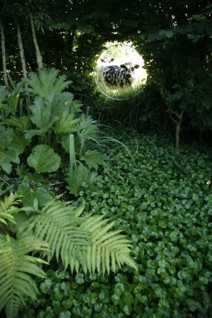 Oculus foto de jardin interieur ciel ouvert athis de l 39 orne tripadvisor - Jardin contemporain athis de l orne nantes ...