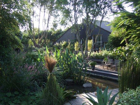 Paulawnia obr zek za zen jardin interieur ciel ouvert athis de l 39 orne tripadvisor - Jardin contemporain athis de l orne nantes ...