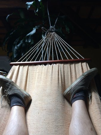 Posada Los Bucaros: Lovely hammock to relax in