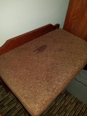 Holiday Inn Rutland-Killington Area: Stained furniture