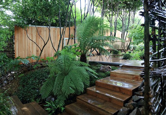 Platelage bois foto de jardin interieur ciel ouvert athis de l 39 orne tripadvisor - Jardin contemporain athis de l orne nantes ...