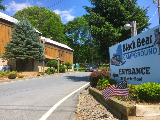 Florida, NY: Welcome to Black Bear Campground