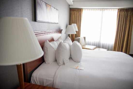 Wyndham Springfield City Centre: Standard Room with 1 King Bed