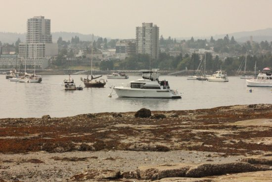View from island to Nanaimo (dock to dock view)