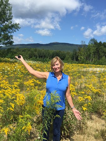 Harrisville, NH: Wife at the base of neighboring Mt Monadnock (we climbed the day before)
