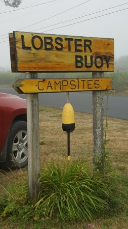 Lobster Buoy Campsites照片