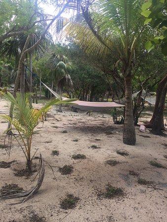 Rose Island : photo2.jpg