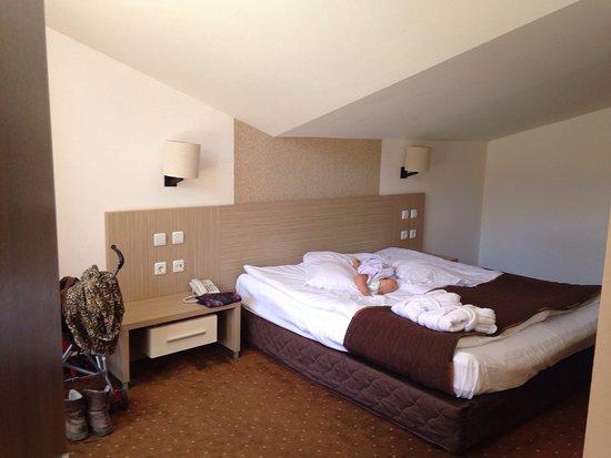 Radina's Way Hotel : photo1.jpg
