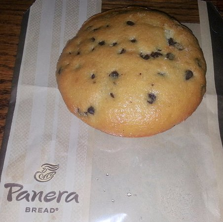a chocolate chip muffie - Picture of Panera Bread, Chicago - Tripadvisor