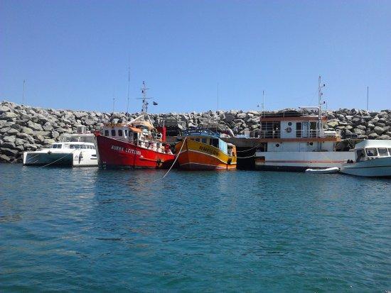 EcoCharme Pousada do Marcilio: Porto de Fernando de Noronha