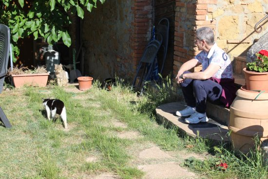Torrita di Siena, Italien: Stefania ed i gatti