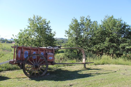 Torrita di Siena, Italien: Il giardino