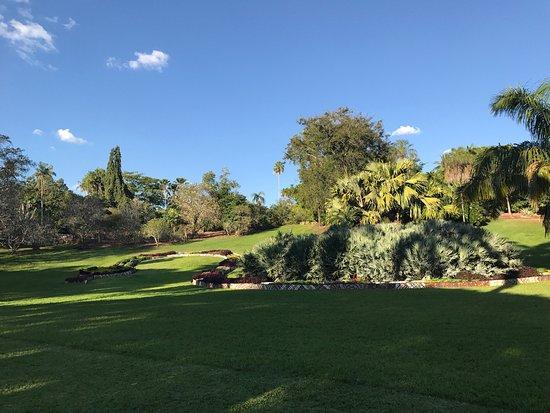 Darwin Botanic Gardens : 很漂亮的地方,有树屋,喷泉,各种花,动物、