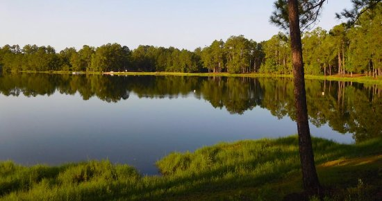 Townsend, GA: Lake view from our site