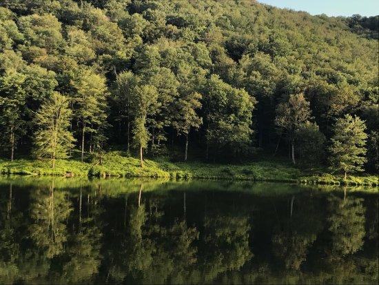 Galeton, PA: Lyman Run State Park