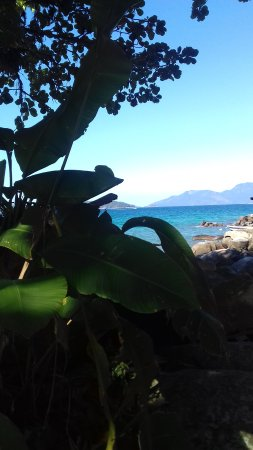 Ilha da Gipóia Foto