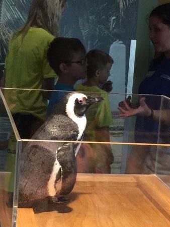 The Florida Aquarium : photo2.jpg