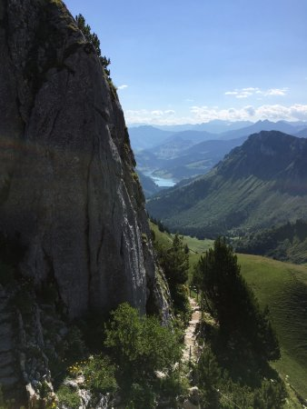 Alpengarten La Rambertia