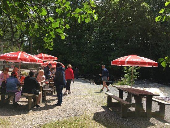 Frongoch, UK: Manons Riverside Cafe