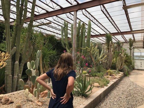 Living Desert Zoo And Gardens State Park Tripadvisor