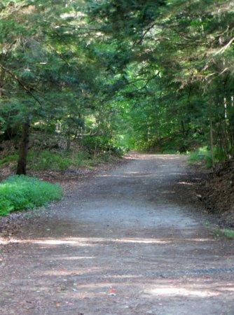 Montpellier, VT: Wide Trail