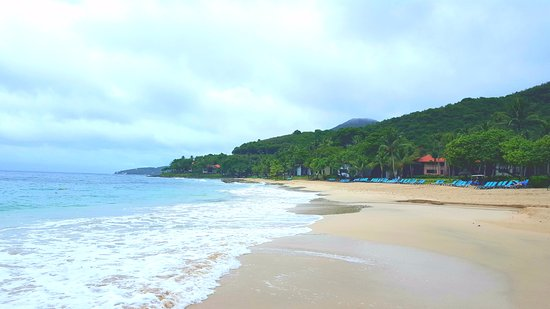 Renaissance St. Croix Carambola Beach Resort & Spa: The view while laying on the beach
