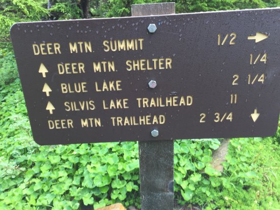 Deer Mountain Trail : sign