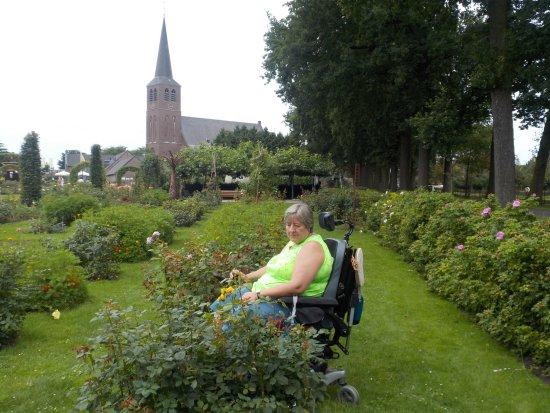 Lottum, Países Baixos: vom Rosengarten aus der Blick zum Dorf