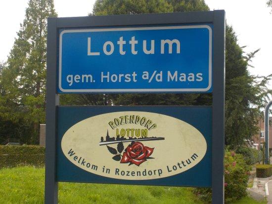 Lottum, Países Baixos: Rosen auch am Ortseingang