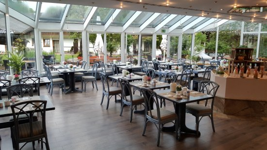 Breakfast Buffet And Garden Picture Of H Hotel Alpina Garmisch - Hotel alpina garmisch