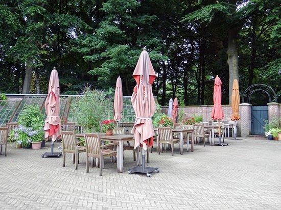 Utrechtse Heuvelrug照片