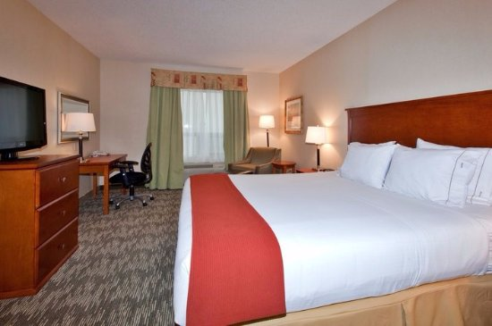 Holiday Inn Express Hotel & Suites Edmonton South: King standard room
