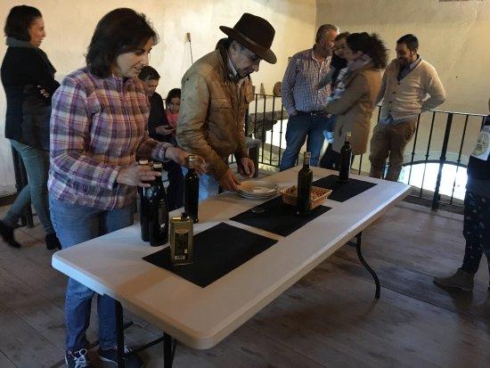 Casabermeja, Spanje: En el 2016 estuvimos en el molino y fue maravilloso , la honestidad hecha aceite, hemos comprado