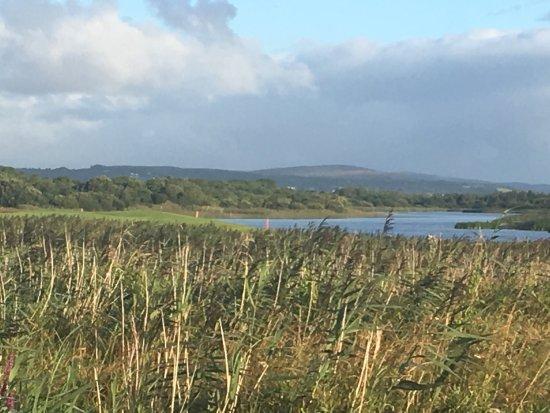 Bushypark, Ireland: photo0.jpg