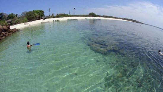 Pedasi Tours: Isla Iguana