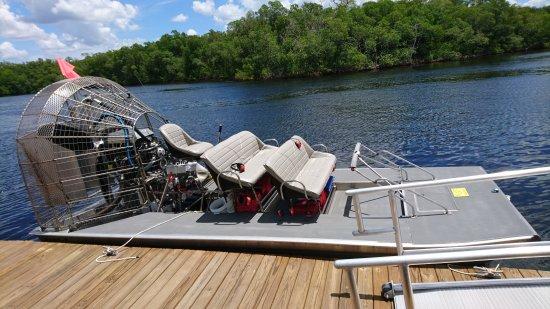 Jungle Erv's Everglades Airboat Tours: DSC_9908_large.jpg