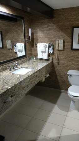 Elgin, IL: Bathroom in regular king with tub/shower combo.
