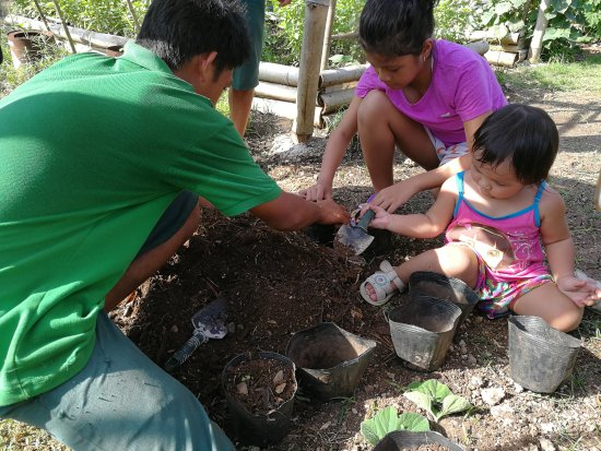 Bluewater Panglao Beach Resort: Gardening session at the resort's organic garden. This is complimentary for resort guests.