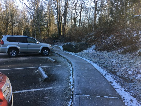 Sammamish, WA: West parking lot. 19 F and still good for trail running.