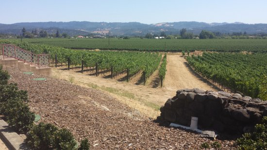 St. Helena, كاليفورنيا: Where the Magic Comes From....
