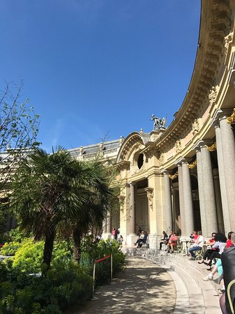 Caf le jardin du petit palais pa recenze restaurace for Cafe du jardin london