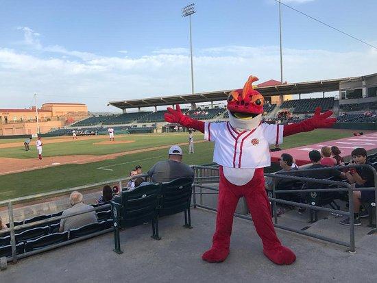 Striker Is The Fire Frog Mascot Picture Of Osceola County Stadium Kissimmee Tripadvisor